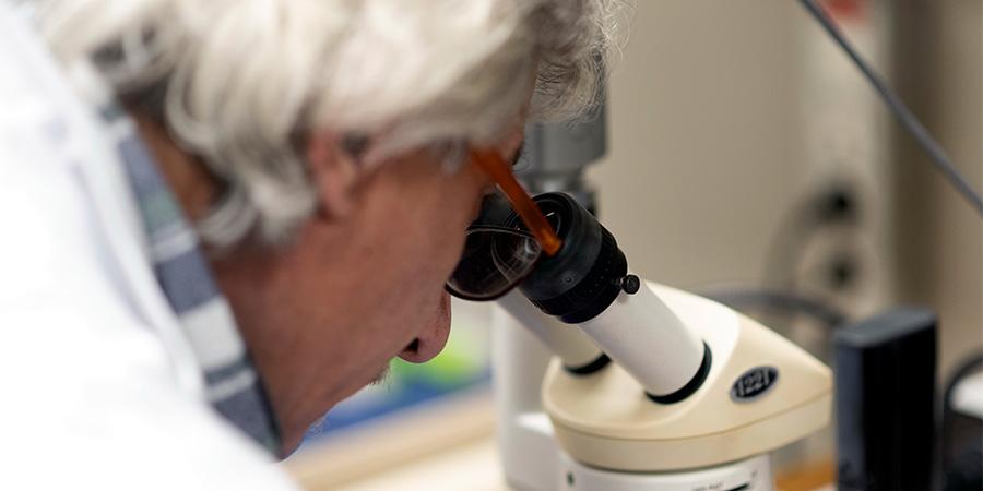 EFFEPIERRE-Controllo-Microscopio